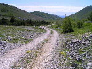 Put za Ošljar