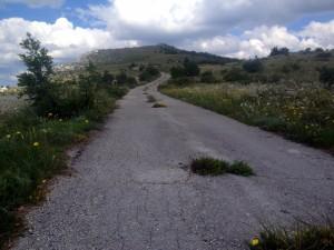 Put za Veli Vrj